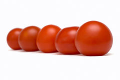 Rank of tomatoes Royalty Free Stock Photography