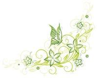 Rankan fjäril, blommar Arkivbild