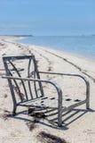 Rankenfußkrebs-Stuhl Stockfoto