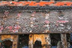 Rankenfußkrebse auf hölzernem Schiffbruchboot stockfotos