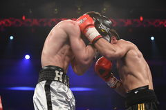 Ranking boxing fight in Palace of sport, Kiev Stock Images