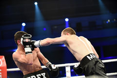 Ranking boxing fight in Palace of sport Royalty Free Stock Photos