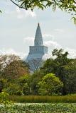 Rankoth Vehera Polonnaruwa,斯里兰卡 库存图片