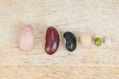 The ranks of different beans Royalty Free Stock Image