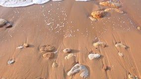 Ranku łamania fala na Piaskowatej plaży z bliska zbiory