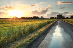 Ranku światło słoneczne nad drogą w Holenderskiej ziemi uprawnej Zdjęcia Stock