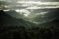 Ranku światło zaświecał las w Nan prowinci, Tajlandia obraz royalty free