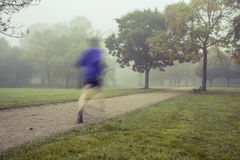 Ranku bieg w parku Zdjęcie Royalty Free