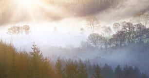 Ranku krajobraz Zdjęcie Royalty Free