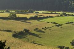 Ranku krajobraz w niskiej Rzecznej Wye dolinie Obrazy Stock