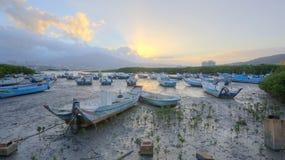 Ranku krajobraz z splatać łodziami na Tamsui rzece w Taipei Tajwan, Zdjęcie Stock