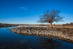 Ranku krajobrazowy wizerunek w Waszyngton Obraz Stock
