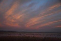 Ranku niebo przy Niskim Klamath obywatela rezerwatem dzikiej przyrody i chmury Zdjęcia Stock
