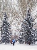 Ranku przespacerowanie na śnieżnym dniu obraz royalty free