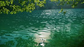 Ranku słońca odbicie w jasnej błękitnej jezioro wodzie