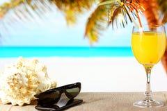 Ranku sok pomarańczowy Fotografia Royalty Free