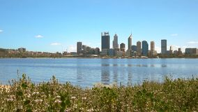 Ranku widok linia horyzontu Perth i kwiaty zdjęcie wideo
