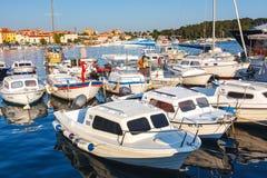 Ranku widok na żaglówki schronieniu w Rovinj z wiele żagiel łodziami cumującymi jachtami i, Chorwacja Zdjęcie Royalty Free