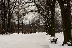 Rannamagipark bij de winter tallinn Estland stock foto's