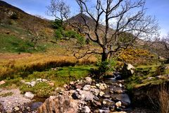 Rannerdale Knotts Royalty Free Stock Images