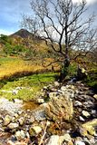 Rannerdale Knotts Royalty Free Stock Photo