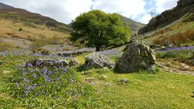 Rannerdale knotts Royalty Free Stock Photography