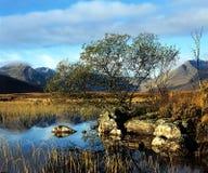 Rannoch amarra (Escocia). Fotos de archivo libres de regalías