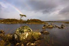 Rannoch moor rainbow Royalty Free Stock Photo