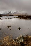 Rannoch Rain Royalty Free Stock Photo
