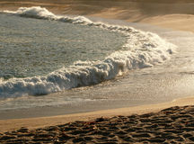 rano na plaży Zdjęcia Royalty Free