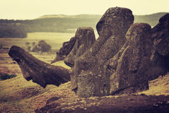 Rano raraku moai Royalty Free Stock Images