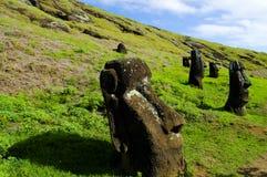 Rano Raraku Moais. Easter Island Stock Images