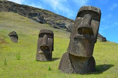 Moais in the slope of Rano Raraku volcano, Rapa Nui Easter Island. Rano Raraku is a volcanic crater formed of consolidated volcanic ash, or lapilli tuff, and royalty free stock image