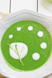 Ramsons (wild garlic) soup detail Stock Image