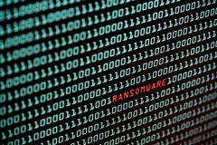 Ransomware or Wannacry text and binary code concept from the desktop computer screen, selective focus, Security Technology. Concept, Internet Hacker concept royalty free stock photo