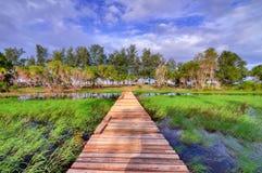 Rantau Abang Terengganu Photographie stock libre de droits