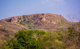 Ranthambhore-Fort bleibt Stockfotos