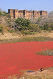 Ranthambore Fort and red lake, India Royalty Free Stock Photos