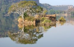 Ranthambore National Park. Scenery at the Ranthambore National Park in Rajasthan, India royalty free stock photo