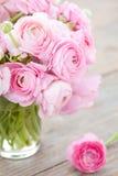 Ranunculus royalty-vrije stock afbeelding