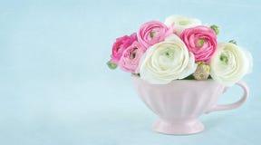 Ranunculus bloemen in een roze kop met exemplaarruimte stock foto