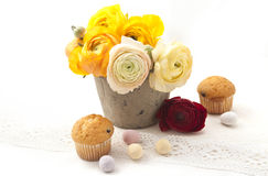 Ranunculus in clay pot Royalty Free Stock Image