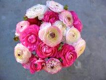 Ranunculus del mazzo Fotografia Stock Libera da Diritti