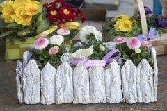 Ranunculus et marguerites à vendre dans le magasin Photos libres de droits