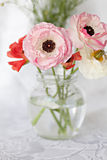 Ranunculus flowers Royalty Free Stock Photography