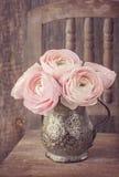 Ranunculus flowers Royalty Free Stock Photos