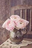 Ranunculus flowers Stock Image