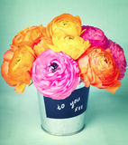 Ranunculus flowers in a bucket labeled to you xxx Royalty Free Stock Photography