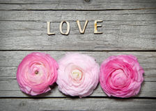 Ranunculus flowers and letters LOVE on wood Stock Photography