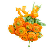 Ranunculus flowers Stock Photos